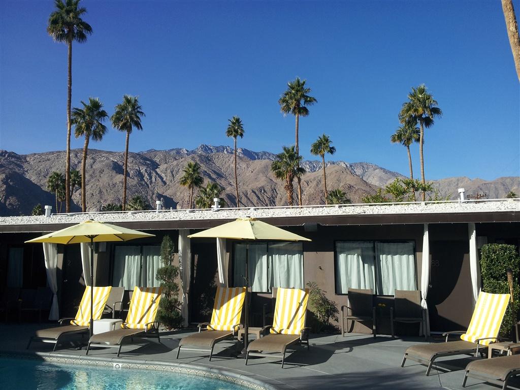 Blog & News | Avanti Hotel | Palm Springs