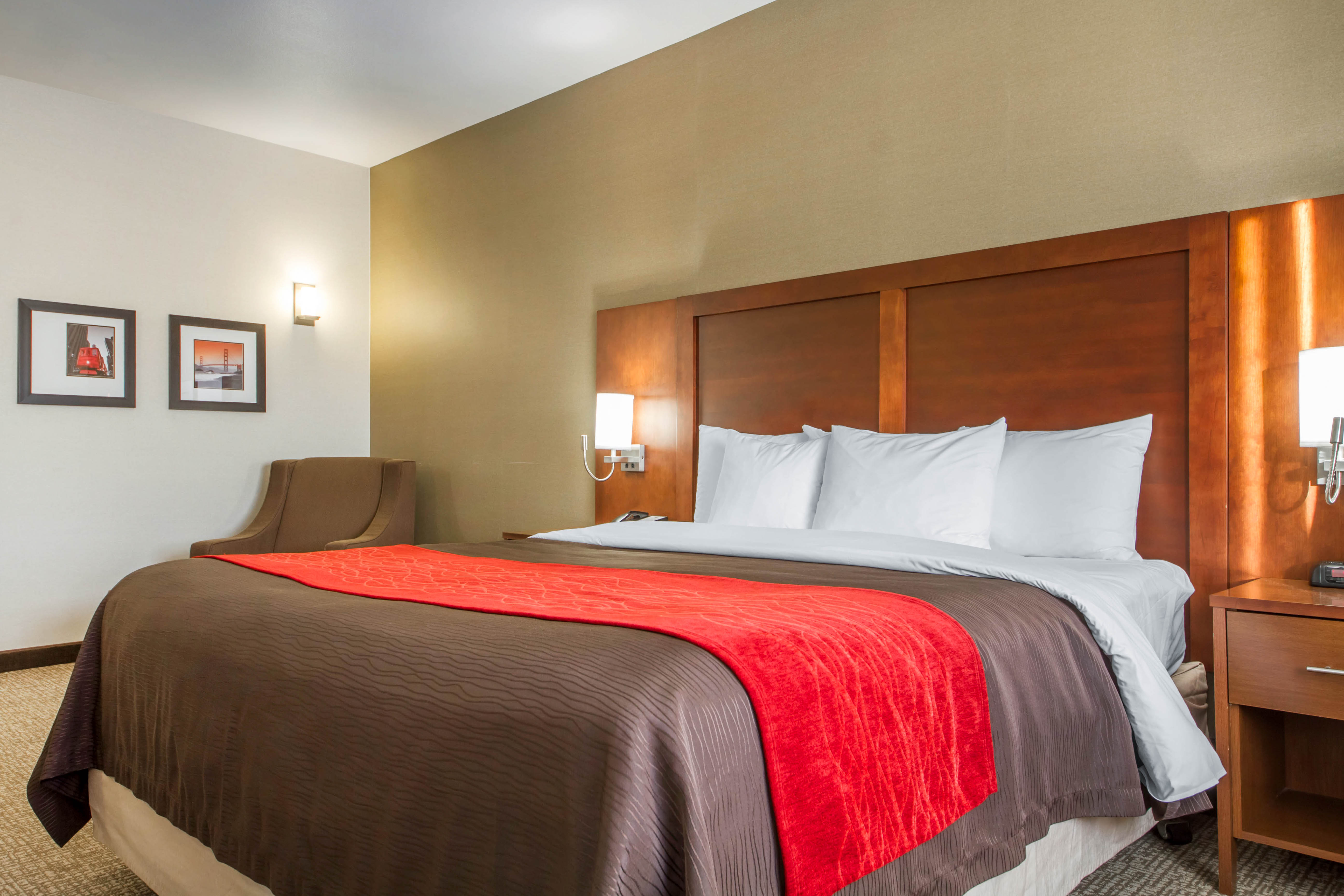 hotel plaza ada bed executive two beds rooms queen twoqueenexec clayton mo louis en st